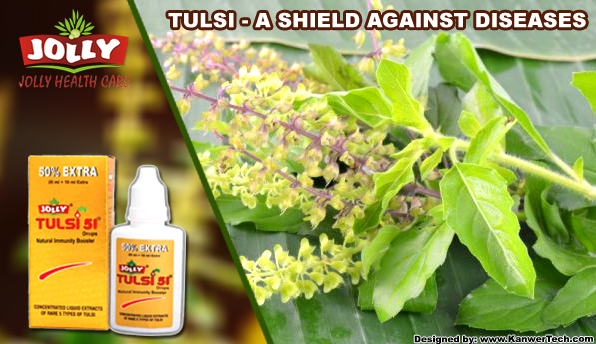 Tulsi - A Shield Against Diseases